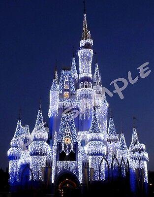 Travel Souvenir Fridge Magnet Florida EPCOT CHINA Disney