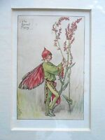 CICELY MARY BARKER - The Sorrel Fairy Flower Fairies - Vintage Mounted Print
