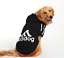 Puppy-Pet-Dog-Clothes-Hoodie-Winter-Sweatshirt-Shirt-Pet-Coat-Jacket-S-9XL thumbnail 7