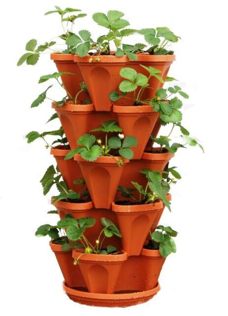 Vegetable Planter 5 Tier Stackable Strawberry Herb Flower Vertical Garden 1  PC