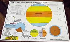 OBJET DE MÉTIER CARTE SCOLAIRE ROSSIGNOL N°5/6 GLOBE;MÉRIDIENS & PARALLÈLES