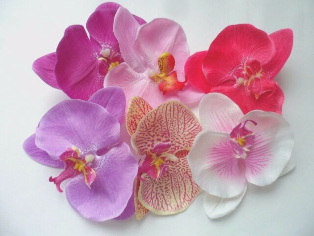 """6pcs Orchid Flower Bridal Wedding Party Hawaii Party Girl w/Clip 4"""""""