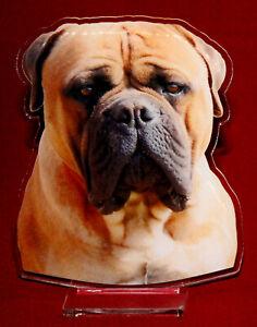 statuette-photosculptee-10x15-cm-chien-bullmastiff-2-dog-hund-perro-cane