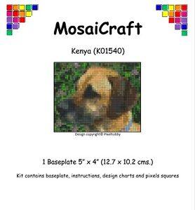 MosaiCraft-Pixel-Mosaic-Art-Kit-039-Kenya-039-Like-Paint-by-Numbers-Pixelhobby