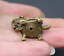 25MM Curio Chinese Bronze Animal TWo Monkey Tortoise Shou Turtle Small Statue