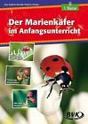 Der Marienkäfer im Anfangsunterricht von Kathrin Zindler (2015, Kopiervorlagen)