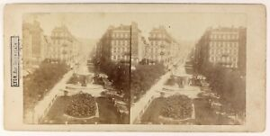 Lione-Rue-Imperiale-Francia-Foto-Stereo-PL55L4n-Vintage-Albumina-c1865