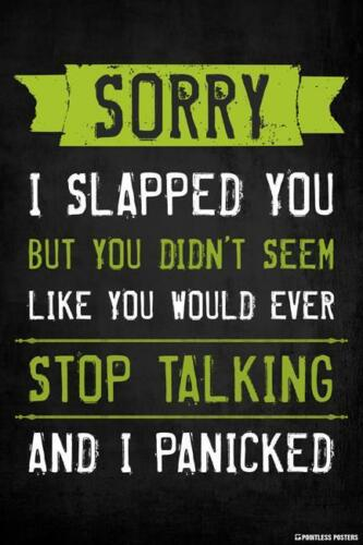 SORRY I SLAPPED YOU STOP TALKING POSTER 12x18 FUNNY WITTY PP023