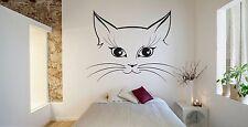 Wall Room Decor Art Vinyl Sticker Mural Decal Cat Animals Nice Cool Kitten FI107