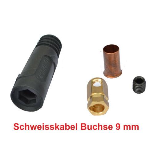 Schweißkabel Buchse Massebuchse  10-25mm² Stecker