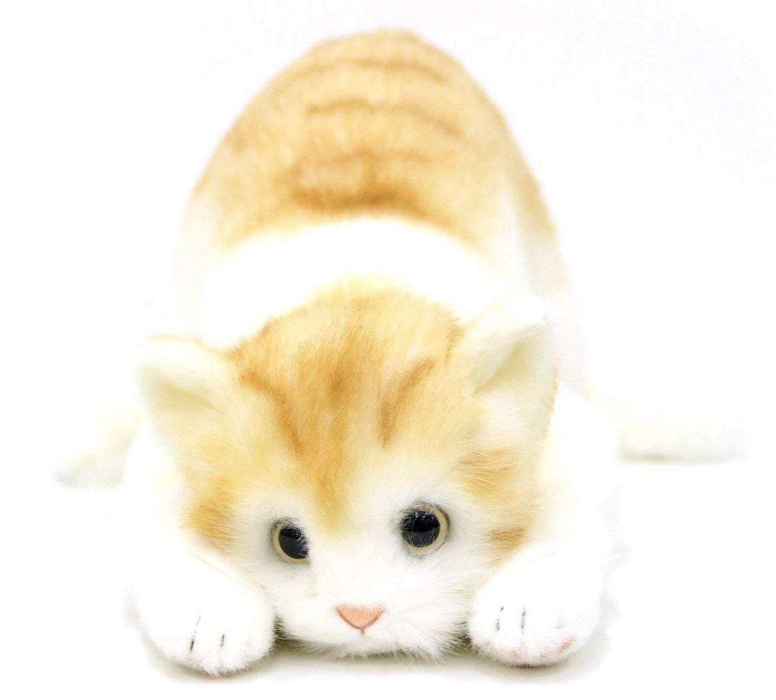 DOUSIN Made in Japan Realistic cat stuffed toy Plush TorarBraun L eyesight 58cm