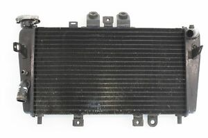 triumph-speed-triple-955i-2000-2001-2002-2003-2004-Cooling-radiator-10825577