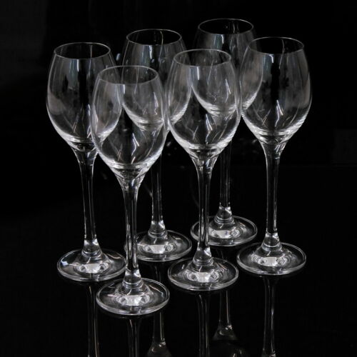 6x Likörglas Schnapsgläser Grappa Gläser Glas aus bleifreiem Kristallglas
