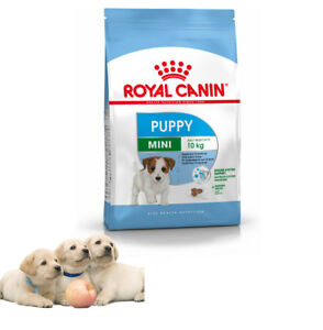 dry dog food mini puppy junior royal canin complete 2 kg 4 kg 8 kg ebay. Black Bedroom Furniture Sets. Home Design Ideas