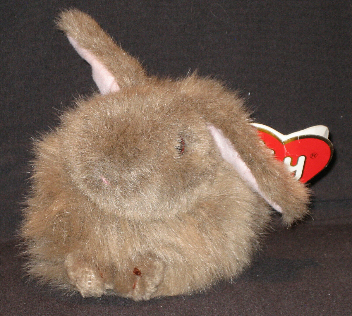 RARE 2ND GEN TY CLASSIC PLUSH - NIBBLES the BROWN BUNNY - MINT with TAG CT