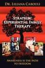 Strategic Experiential Family Therapy by Dr. Liliana Cabouli 9781425963507