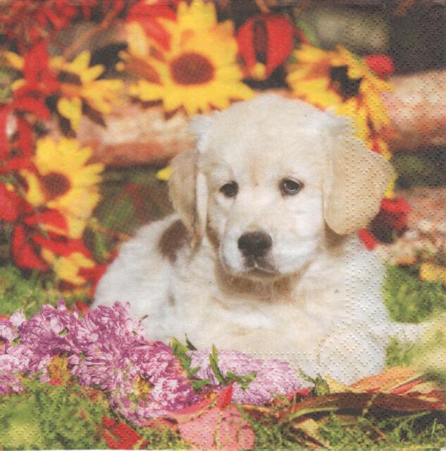 4 lose Servietten Napkins Hund Blumen