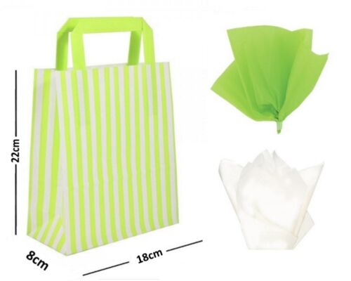 Candy Stripe Flat Handle Bags ~ Birthday Party Paper Gift Bag Optional Tissue