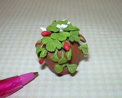 DOLLHOUSE Miniatures 1:12 Scale Miniature Strawberry Plant-Terra Cotta Pot