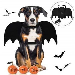 Fledermaeuse-Fluegel-Halloween-Party-Kostuem-fuer-Pet-Schwarz-Hund-Katze-Fluegel-A1C6