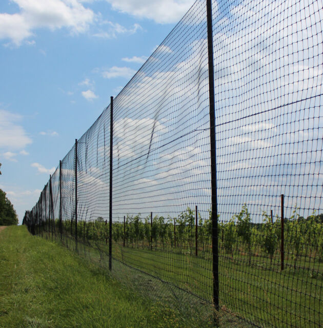 "6/' x 100/' Welded Wire 14ga 1.5/"" x 4/"" Galvanized Fence Mesh Deer Animal Fencing"