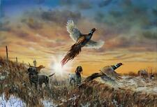 Jim Hansel Pheasant print Package Signed and Numbered Prints and Open 5 Prints
