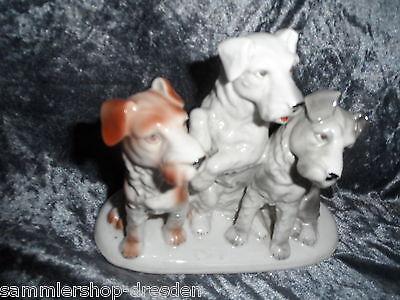 Ehrlich Hk101 Terrier Porzellangruppe 3 Terrier Hnr 10077 Handbemalt German Porcelaine