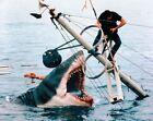Steven Spielberg von Richard Schickel (2012, Gebundene Ausgabe)