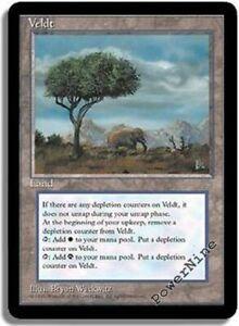 Gold Ice Age Mtg Magic Rare 4x x4 4 PLAYED Stormbind