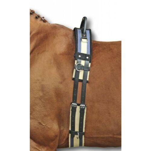 Longiergurt mit Haltegriff  VB//WB Pony Shetty HKM 1795  Neu