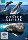 Die Könige der Ozeane (2013)
