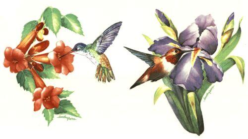 "2 Hummingbird Iris Trumpet Flower 5/""  Waterslide Ceramic Decals Xx"