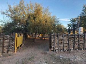 Rancho agricola en venta por la carretera 36 norte a 1 hora 40 minutos de Hermosillo