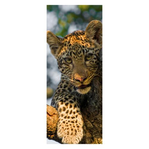 Türtapete leopard en Afrique du Sud Papier Peint porte-Autocollants la fresque türbild
