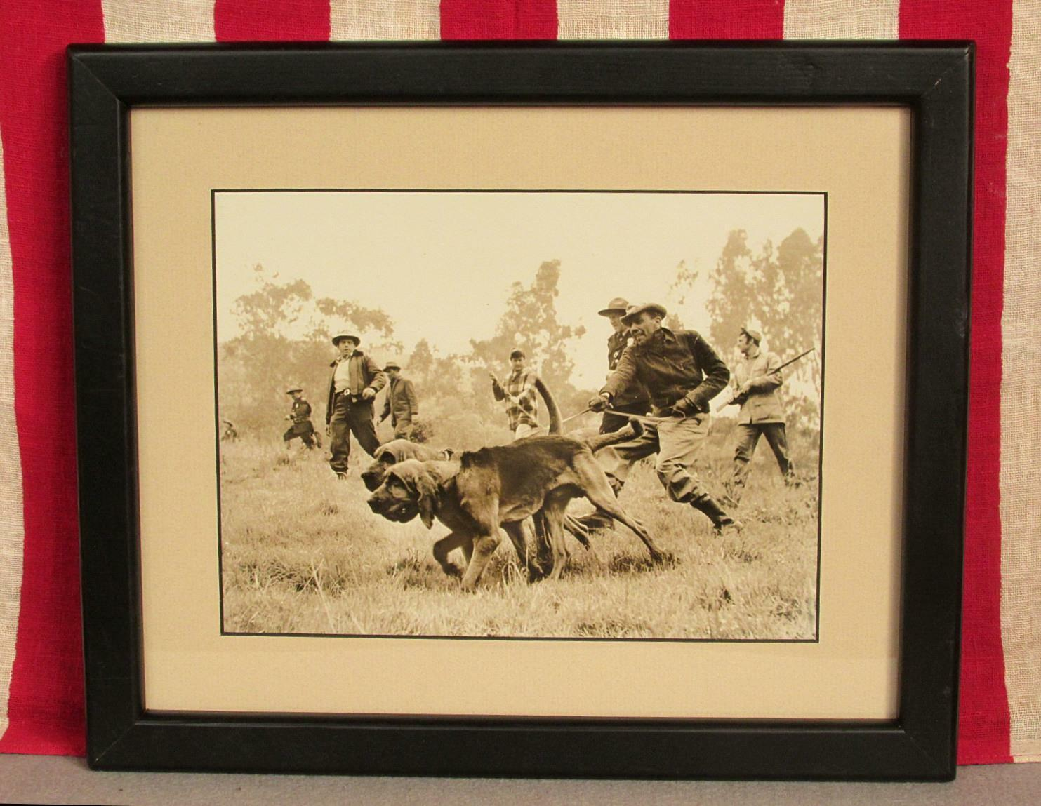 Vintage 1950s Hunting Party with Sporting Dogs Photograph Print in Frame Nice