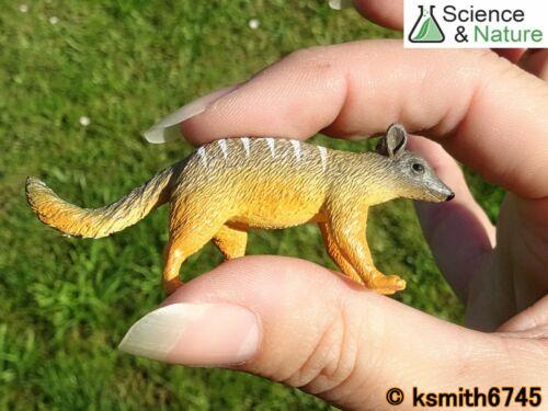 S/&n giocattolo in plastica piccolo myrmecobius fasciatus Wild Zoo Animale Australiano NUOVO