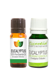 10ml-50ml-100ml-Eucalyptus-Essential-Oil-Standard-and-Organic-Pure-Natural