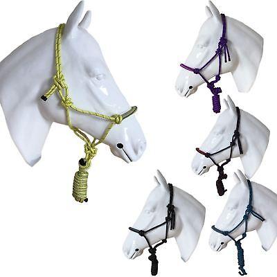 Cavallo A Pressione Capezza Natrual Equitazione Bicolore Formazione Corda Cinturino Caviglia-