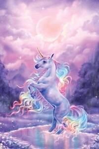 Selena-Fenech-Unicorn-POSTER-61x91cm-NEW-fantasy-rainbow-unicorn-rearing
