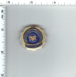 Details about New York State Department of Correctional Services (DOCS)  Officer Mini Pin