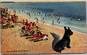 With-My-Pals-on-the-Beach-Terrier-Sun-Bathers-c1944-Vintage-Postcard-K16