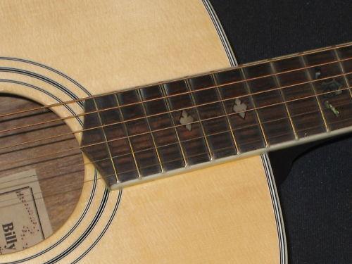 Vorf Modell Westerngitarre BILLY RAY TG-70