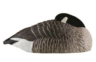 canada goose ebay