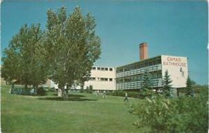 Camas-Bathhouse-Scienic-Western-Montana-Unused-Vintage-Postcard-A111