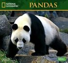National Geographic Pandas - 2017 Calendar 33 X 30cm