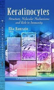 Keratinocytes-Structure-Molecular-Mechanisms-amp-Role-in-Immunity