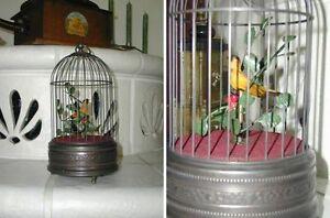 Brillant Wunderschöne Spieluhr Singender Vogel Im Käfig Komplette Artikelauswahl