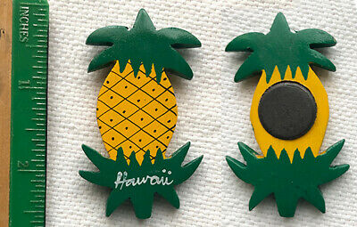Hawaiian Pineapple Crystal Magnet Jewelry Hawaii island Gift Aloha Stationary M