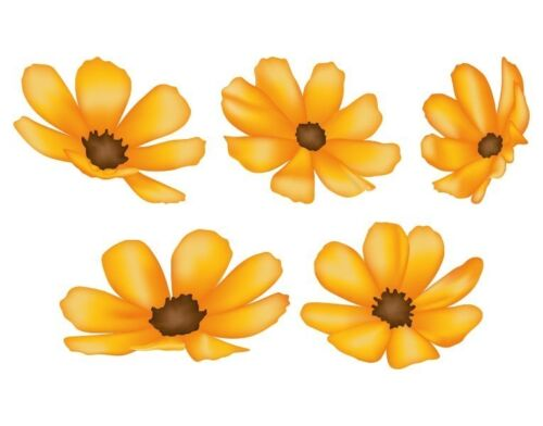 show original title Details about  /Sunflowers-Highest Quality Sticker Wall Stickers Decal