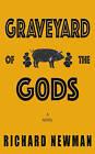Graveyard of the Gods: A Novel by Richard Newman (Paperback, 2016)
